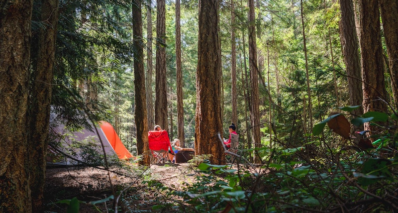 family camping in forest knows first aid for insect bites and stings